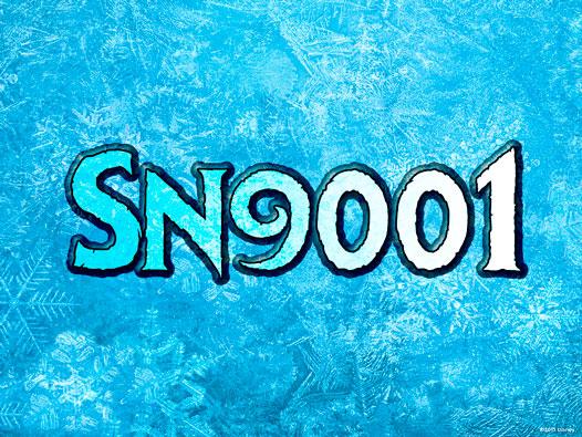Без подписи, в начало SN 9001
